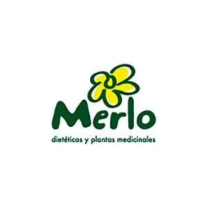 Logo Merlo y Torrente