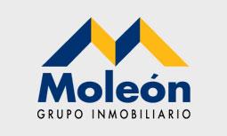 logo inmobiliaria moleon